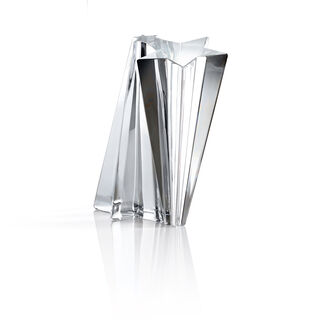 SHOOTING STAR TROPHY   Image