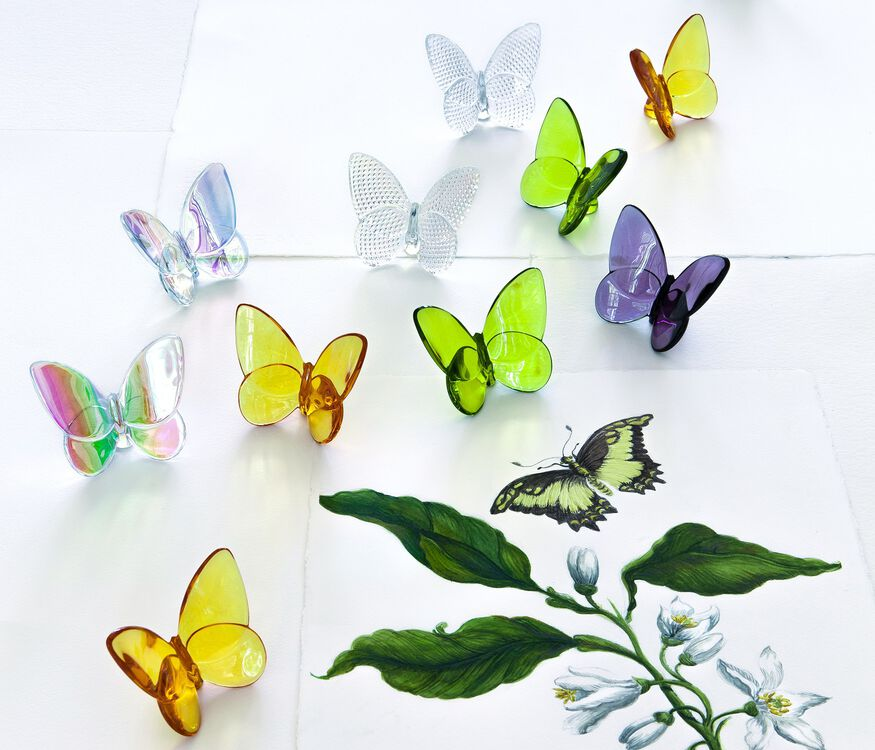 PAPILLON LUCKY BUTTERFLY, Iridescent clear - 5