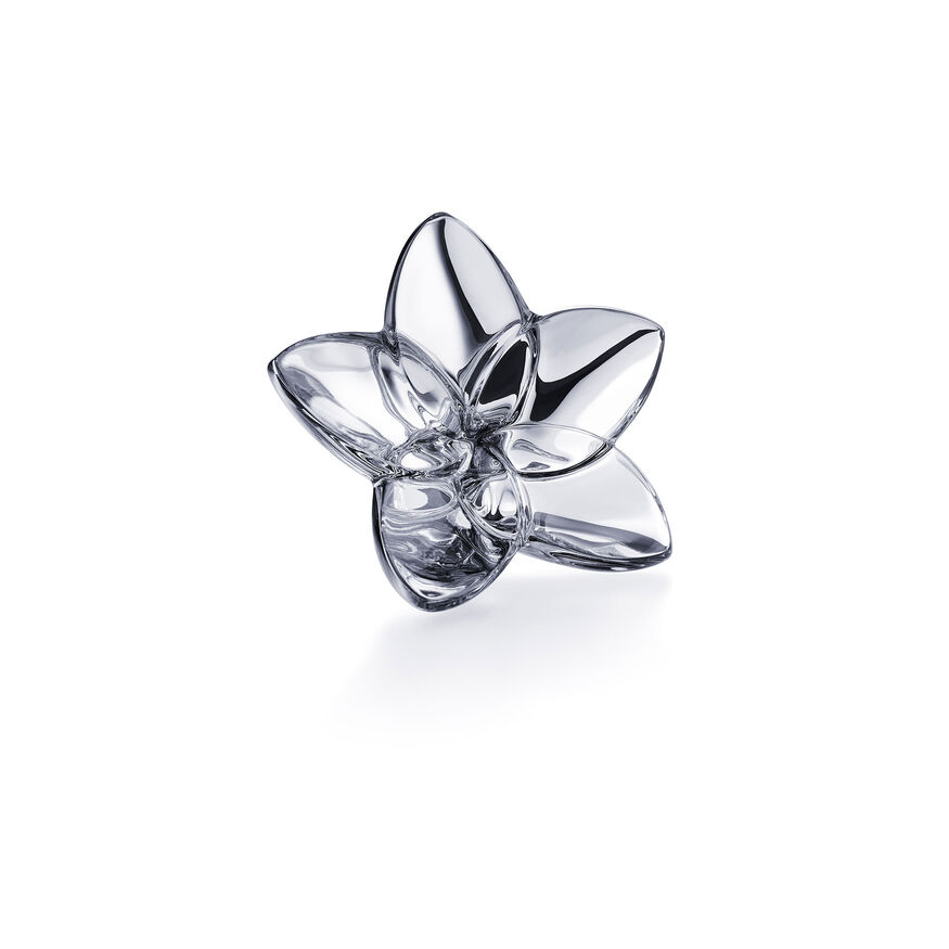 THE BLOOM COLLECTION, Argent