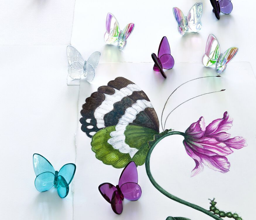 PAPILLON LUCKY BUTTERFLY, Peony - 3